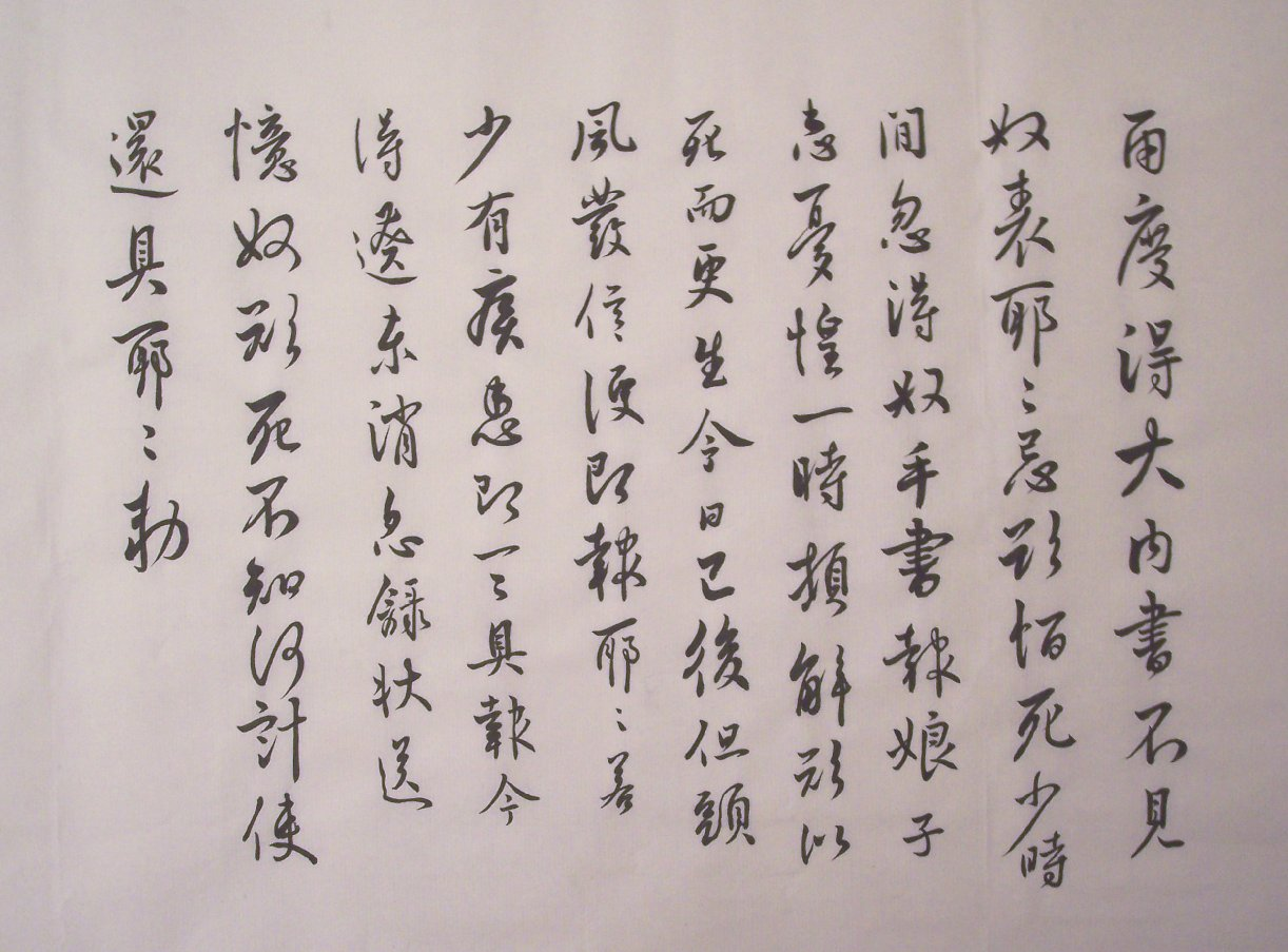 Dictionary of chinese calligraphy styles 書法字典 indigenous